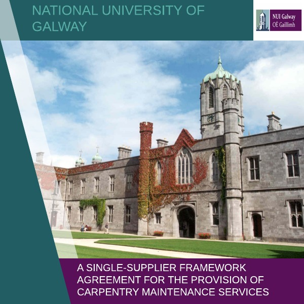 Government-Tenders-NUIG1 Government Tenders